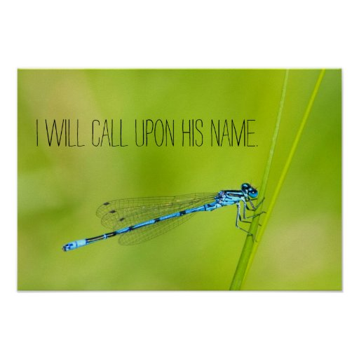 Pretty blue dragonfly with christian quote poster
