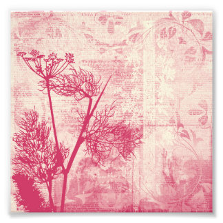 Pretty Botanical Pink Dandelion Seed Silhouette Photographic Print