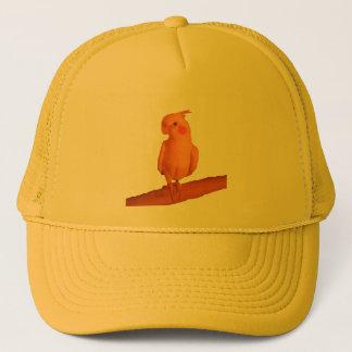 pretty boy trucker hat