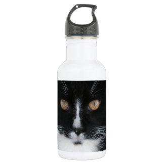 Pretty Boy Tuxedo Kitty 532 Ml Water Bottle