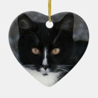 Pretty Boy Tuxedo Kitty Ceramic Heart Decoration