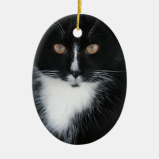 Pretty Boy Tuxedo Kitty Ceramic Oval Decoration