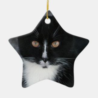 Pretty Boy Tuxedo Kitty Ceramic Star Decoration