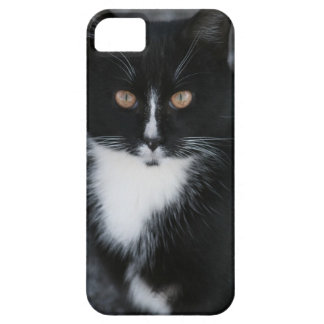 Pretty Boy Tuxedo Kitty iPhone 5 Cover