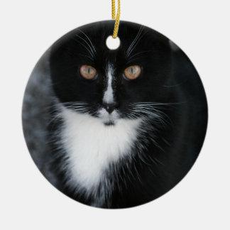 Pretty Boy Tuxedo Kitty Round Ceramic Decoration