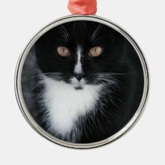 Pretty Boy Tuxedo Kitty Silver-Colored Round Decoration