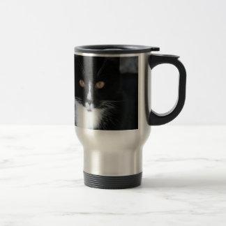 Pretty Boy Tuxedo Kitty Stainless Steel Travel Mug