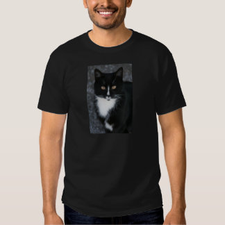 Pretty Boy Tuxedo Kitty T Shirt