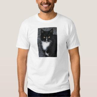 Pretty Boy Tuxedo Kitty Tshirts
