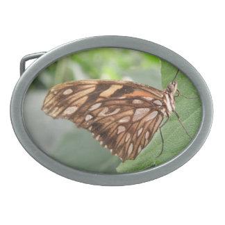 Pretty Brown Butterfly Belt Buckle