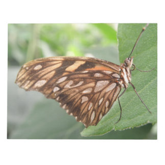 Pretty Brown Butterfly Notepad