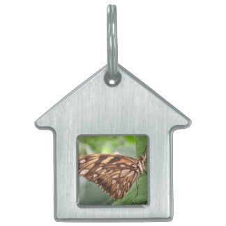 Pretty Brown Butterfly Pet Tag