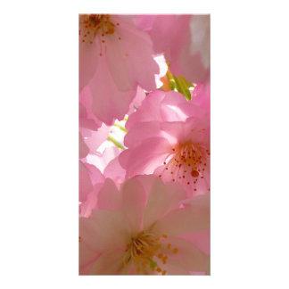 Pretty Cherry Flowers Customised Photo Card