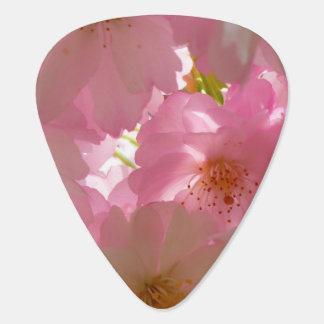 Pretty Cherry Flowers Plectrum
