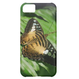 Pretty Clipper Butterfly iPhone 5C Covers