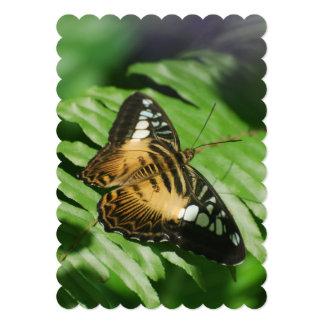 Pretty Clipper Butterfly Personalized Invitations