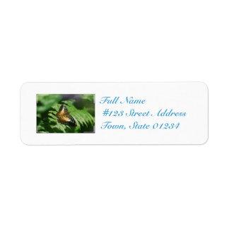 Pretty Clipper Butterfly Return Address Label