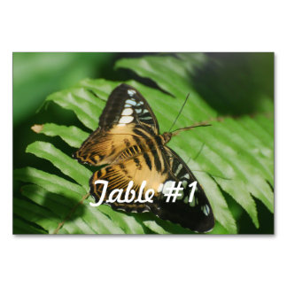Pretty Clipper Butterfly Table Card