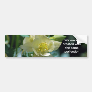 Pretty columbine flower and meaning bumper sticker