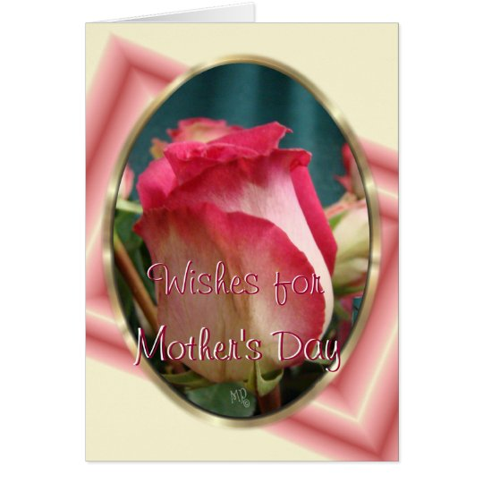 Pretty Coral Bi-colour Rose2- any occasion Card
