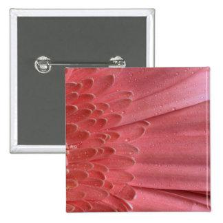 Pretty Coral Pink Gerbera Daisy 15 Cm Square Badge