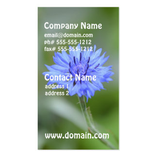 Pretty Cornflower Pack Of Standard Business Cards