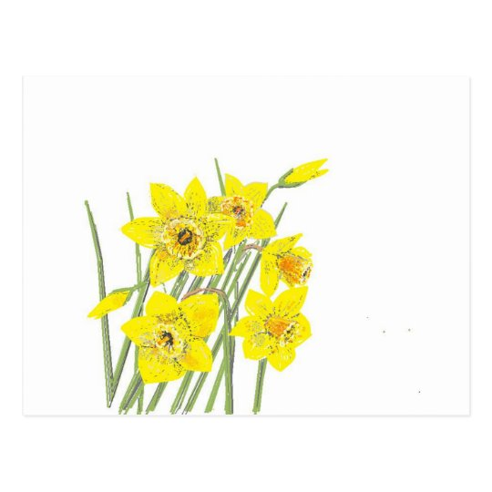 Pretty Daffodils Postcard
