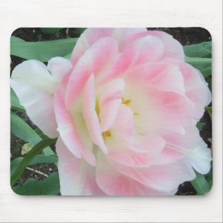 Pretty Delicate Feminine Flower White Pink Gifts Mouse Pad