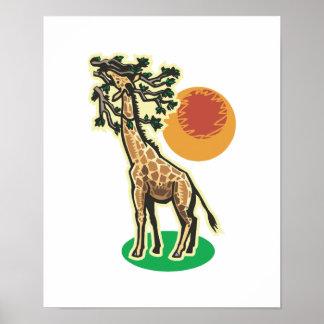 pretty eating giraffe scene poster