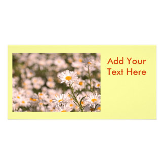 Pretty Field of Daisies Photo Greeting Card