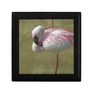 Pretty Flamingo Gift Box