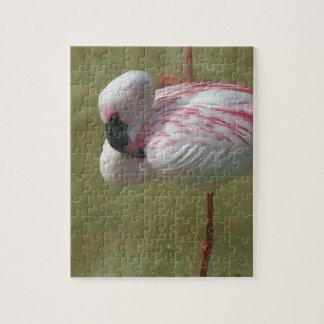 Pretty Flamingo Jigsaw Puzzle