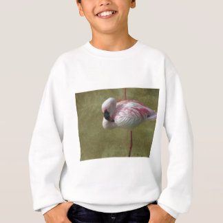 Pretty Flamingo Sweatshirt