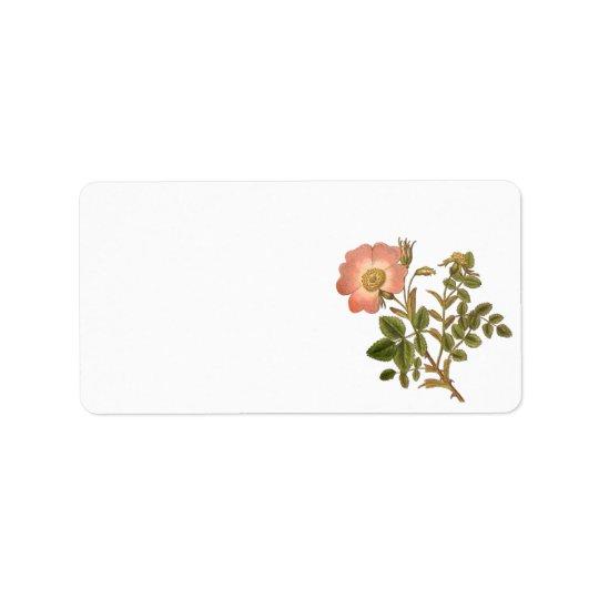 Pretty Floral Label - Pink Vintage Rose Address Label