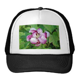 Pretty Flower Hat