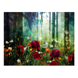 Pretty Flower Meadow in Fantasy Forest Postcard