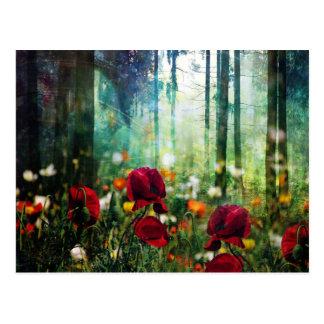 Pretty Flower Meadow in Fantasy Forest Postcard