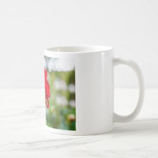 Pretty flower basic white mug
