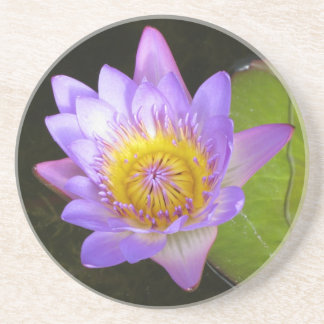 Pretty Flower Water Lily Coaster