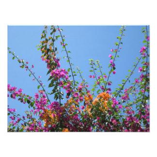 """""""Pretty Flowers in my Backyard"""" Photo Print"""