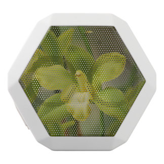 Pretty Green Orchids White Boombot Rex Bluetooth Speaker