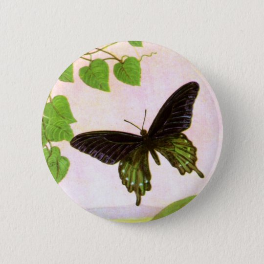 Pretty Green Vintage Butterfly 6 Cm Round Badge