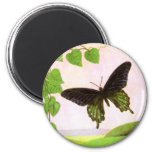 Pretty Green Vintage Butterfly Refrigerator Magnet