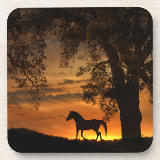 Pretty Horse In the Sunset Coasters