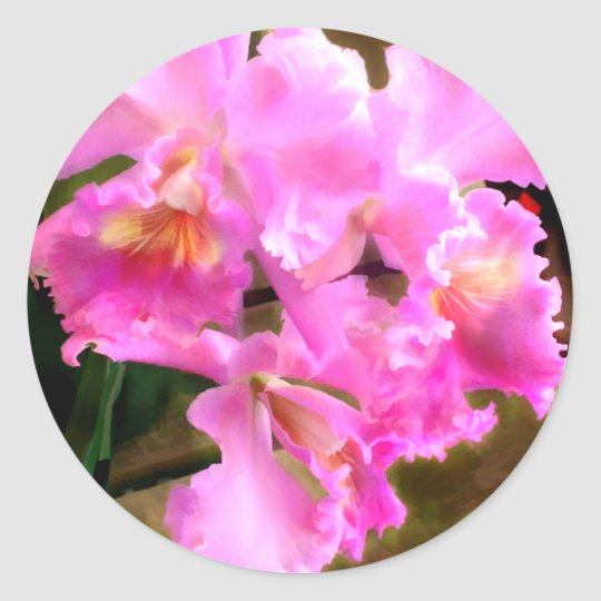 Pretty in Pink Cattleya Orchids Classic Round Sticker