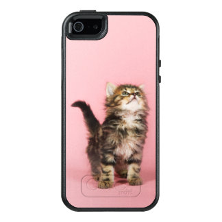 Pretty in Pink Kitten OtterBox iPhone 5/5s/SE Case