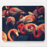 Pretty In Pink Mousepads