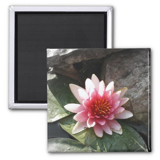 Pretty in Pink Square Magnet