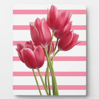 Pretty in Pink Tulips Display Plaques