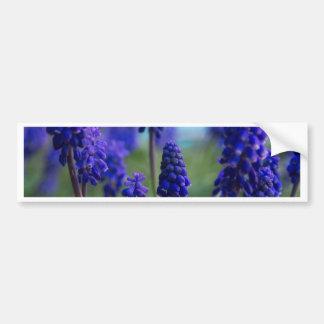 Pretty in Purple Bumper Sticker